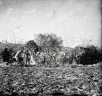 Čišćenje zidova crkve Svetog Nikole 1954. godine, Banjole. (bn. 3063) Iz arhive Arheološkog muzeja Istre