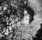 Vanjsko lice apside s lezenom, crkva Svetog Nikole 1955. godine, Banjole. (bn. 3062, bp. 3050) Iz arhive Arheološkog muzeja Istre