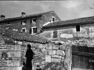 Dvije rustične glave na ulazu u dvorište jedne kuće u Barbanu početkom 50-ih godina, Barban. (bn. 1732 a) Iz arhive Arheološkog muzeja Istre