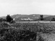 Pogled na Beram sa zapada krajem 80-ih godina, Beram. (fn. 20343) Iz arhive Arheološkog muzeja Istre
