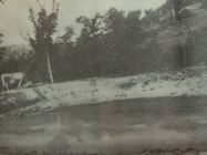 Lokva u boljunskom polju između dva svjetska rata , L'Arena di Pola, (2. ožujak 1991.)