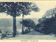 Via degli orti  (tadašnji naziv) snimljena 1928.g., Buzet. Iz arhive Zavičajnog muzeja u Buzetu