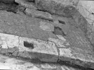 Južna strana prezbiterija trobrodne bazilike sv. Mihovila 1955. godine, Vodnjan. (fn. 3588) Iz arhive Arheološkog muzeja Istre