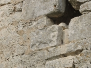 Ostaci bestijarija. Crkva Svetog Mihovila/arheološko nalazište Banjole. Autor: Aldo Šuran (2007.)