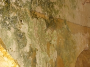 Unutrašnjost. Crkva Svetog Mihovila/arheološko nalazište Banjole. Autor: Aldo Šuran (2007.)