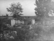 Ruševine ranosrednjovjekovne bazilike u Guranu krajem 40-ih godina, Guran. (fp. 544) Iz arhive Arheološkog muzeja Istre