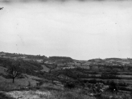 Pogled na Gradinu i Monte Loi 1971. godine, Krasica. (bn. 10866.) Iz arhive Arheološkog muzeja Istre