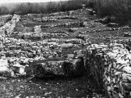 Južna bazilika, Nezakcij. (fp. 4063 - foto Orel) Iz arhive Arheološkog muzeja Istre