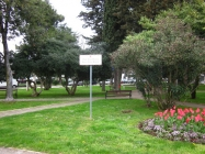 Park Irme Benčić. Novigrad. Autor: Željko Cetina (2013.)