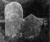 Nadgrobna ploča kod Svetog Vida sredinom 50-ih godina, Paz. (fn. 3937) Iz arhive Arheološkog muzeja Istre