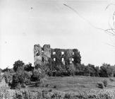Pogled na ruševine kaštela u Pazu sredinom 50-ih godina, Paz. (fn. 3934) Iz arhive Arheološkog muzeja Istre