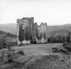 Ruševine starog Paza, Paz. (inv. neg. 23549, foto Bačić) Iz arhive Arheološkog muzeja Istre