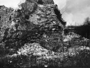 Ruševine crkve sv. Teodora kod raklja krajem 40-ih godina, Rakalj. (fn. 880) Iz arhive Arheološkog muzeja Istre