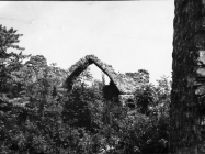 Ruševine crkve sv. Teodora kod raklja sredinom 60-ih godina, Rakalj. (fn. 6466) Iz arhive Arheološkog muzeja Istre