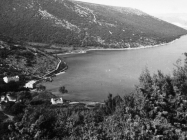 Pogled na uvalu Blaz kod Raklja 1972. godine, Rakalj. (fp. 8306) Iz arhive Arheološkog muzeja Istre