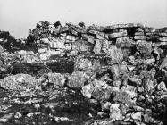 Vanjsko lice tumula na Maklavunu kod Sošića krajem u drugoj polovici 50-ih godina, Rovinjsko selo. (fn. 4857) Iz arhive Arheološkog muzeja Istre