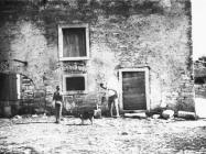 Sekundarno zazidani lukovi prilikom pretvaranja tora u kuću 1969. godine, stancija Val de Naga, Štinjan. (bn. 8692a, bp. 8756a) Iz arhive Arheološkog muzeja Istre