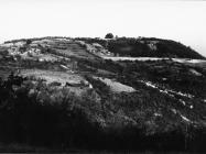 Pogled na Rožeru s Brkača u prvoj polovica 60-ih godina, Vižinada. (fn. 6007) Iz arhive Arheološkog muzeja Istre