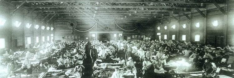"""Predavanje Ive Milovan Delić """"Pandemija španjolske gripe 1918.-1919. u Puli"""" u Državnom arhivu u Pazinu"""