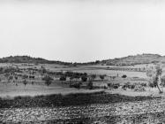 Pogled na gradine Solenia i Petrovac kod Bačve 1978. godine, Bačva. (fn. 16198) Iz arhive Arheološkog muzeja Istre