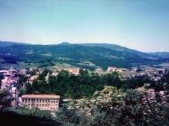 Gorčica 1989. godine, Buzet. (23727) Iz arhive Arheološkog muzeja Istre