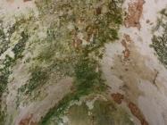 Bačvasti svod. Crkva Svetog Mihovila/arheološko nalazište Banjole. Autor: Aldo Šuran (2010.)