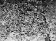 Antička spolija s natpisom iznad protala crkve sv. Jakova u Guranu 1955. godine, Guran. (fn. 3141) Iz arhive Arheološkog muzeja Istre