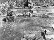 Sjeverni i srednji brod ranosrednjovjekovne bazilike u Guranu krajem 50-ih godina, Guran. (fn. 4915) Iz arhive Arheološkog muzeja Istre