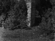 Ruševine crkve sv. Jakova kod Kanfanara početkom 50-ih godina, Kanfanar. (fn. 1612) Iz arhive Arheološkog muzeja Istre