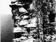 Zidovi razrušene kule Turan 1991. godine, Koromačno. (fn. 24906) Iz arhive Arheološkog muzeja Istre