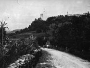 Pogled na kaštel u Momjanu početkom 50-ih godina, Momjan. (fn. 2242) Iz arhive Arheološkog muzeja Istre