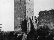 Pogled na kaštel u Momjanu početkom 50-ih godina, Momjan. (fn. 2252) Iz arhive Arheološkog muzeja Istre