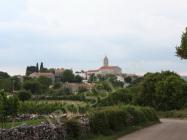 Panorama Mutvorana. Autor: Aldo Šuran (2009.)
