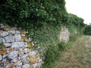 Sjeverne zidine Mutvorana. Autor: Aldo Šuran (2009.)