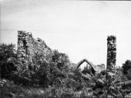 Ruševine crkve sv. Teodora kod raklja sredinom 60-ih godina, Rakalj. (fn. 6467) Iz arhive Arheološkog muzeja Istre