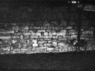 Dio južnog zida crkve sv. Ivana evanđelista 1972. godine, Gajana. (fn. 11527) Iz arhive Arheološkog muzeja Istre