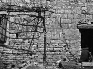 Južni zid crkve sv. Ivana evanđelista sredinom 60-ih godina, Gajana. (bn. 6368) Iz arhive Arheološkog muzeja Istre