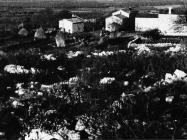Pogled na selo Radmani kod Žbandaja krajem 50-ih godina, Sveti Lovreč. (fn. 5691) Iz arhive Arheološkog muzeja Istre