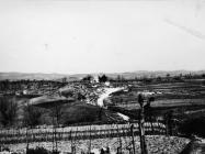 Pogled na Vižintin vrh - Sv. Leonard početkom 60-ih godina. (bn. 6888.) Iz arhive Arheološkog muzeja Istre